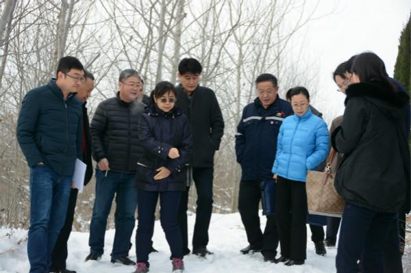 山東省自然資源廳韓景敏處長一行到夏甸金礦檢查指導工作